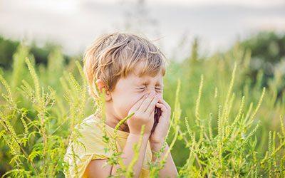 Naturopathie : lutter contre les allergies saisonnières