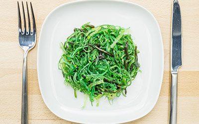 Diététique : des algues dans nos assiettes !