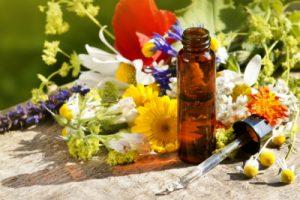 financement-praticien-naturopathie-masterclass